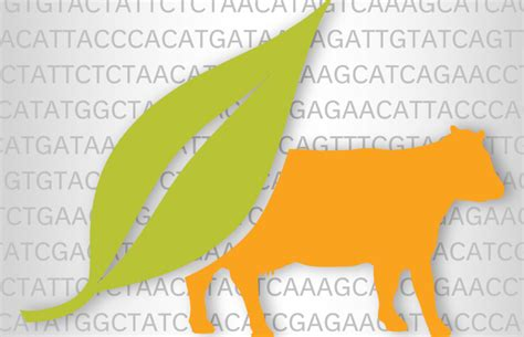 Plant And Animal Sequencing  Tools To Improve Breeding And Selection