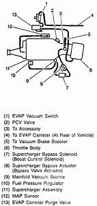Vacuum Lines And Sensors - Gm Forum