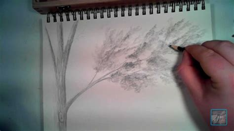 draw realistic  leaves youtube