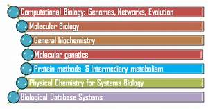 Help Guide For Biochemistry And Bioinformatics