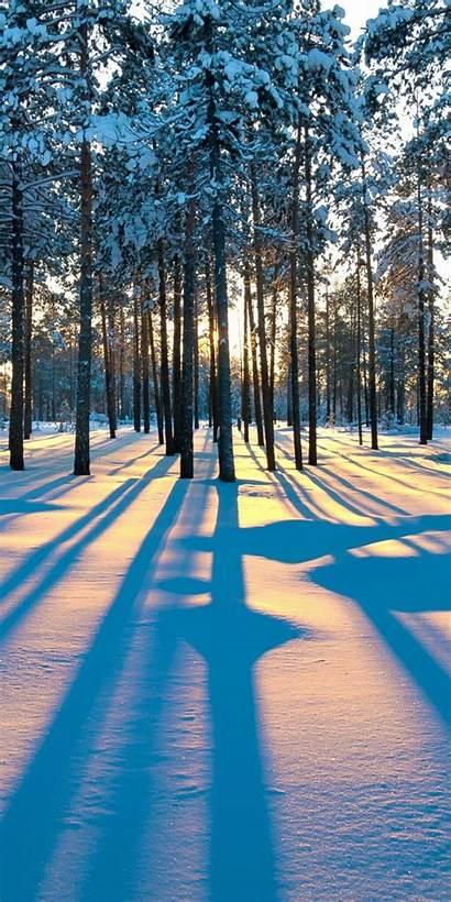 Iphone Wallpapers Winter Scenery Plant Galaxy Mundo