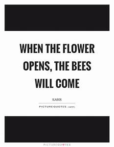 Flower Quotes |... Funny Kabir Quotes