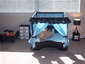 Canopy luxury dog bedroom set beds blankets furniture for Dog bedroom set