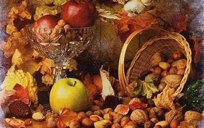 Windows Autumn Harvest Fall Thanksgiving Wallpapers Bounty