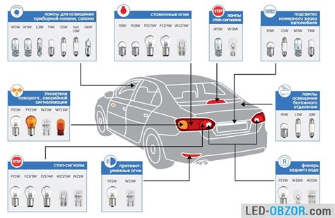 Sockets Of Led Lamps For Cars