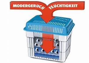 Luftentfeuchter Gegen Schimmel : staubmilben aus dem teppich entfernen teppich reinigen ~ Michelbontemps.com Haus und Dekorationen