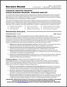 Resume Sample Business Analyst