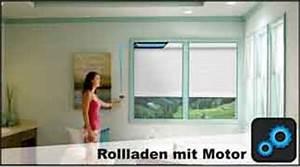 Rolladen Online Konfigurieren : rolladen vorbaurolladen g nstig online kaufen ~ Michelbontemps.com Haus und Dekorationen