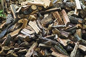 Brennholz Richtig Lagern : brennholz richtig lagern ganz einfach ~ Watch28wear.com Haus und Dekorationen