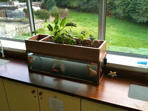 lasalle secondary school classroom aquaponic project