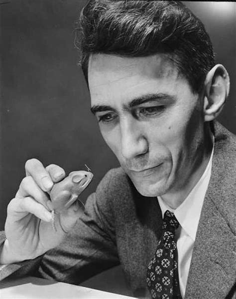 10,000 Hours With Claude Shannon: How A Genius Thinks