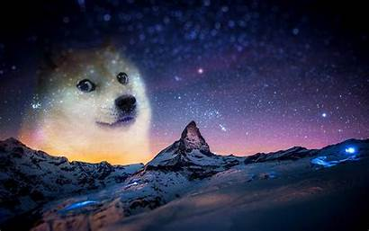 Memes Snow Doge Night Animals Wallpapers Backgrounds