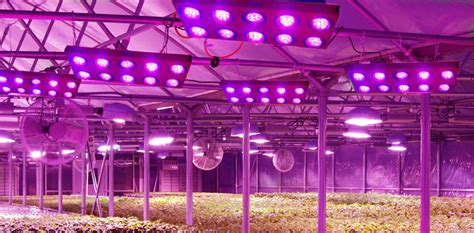 greenhouse led grow lights led light design amazing commercial led grow lights led