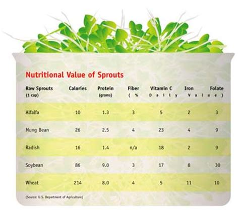 Sprout Nutrition