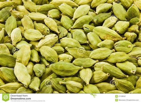 what is cardamom cardamom spice stock photography image 21128552
