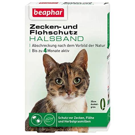 flohhalsband katze vergleich und kaufberatung  die