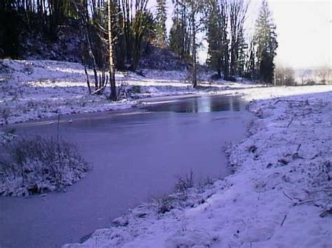 frozen pond  december garden helper gardening