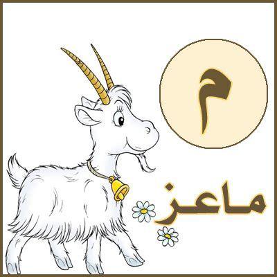 almaalm asma btakat alhrof alhjaey arabic alphabet