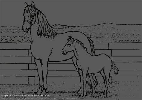bilder zum ausmalen pferde  bilder zum ausmalen