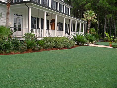 Bermuda Grass Lawn Care