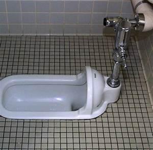 Rohrreiniger Für Toilette : japanisches wc nebenkosten f r ein haus ~ Frokenaadalensverden.com Haus und Dekorationen