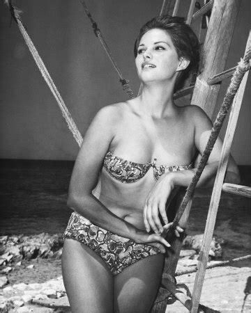 claudia cardinale bikini i speak mojito miss claudia cardinale