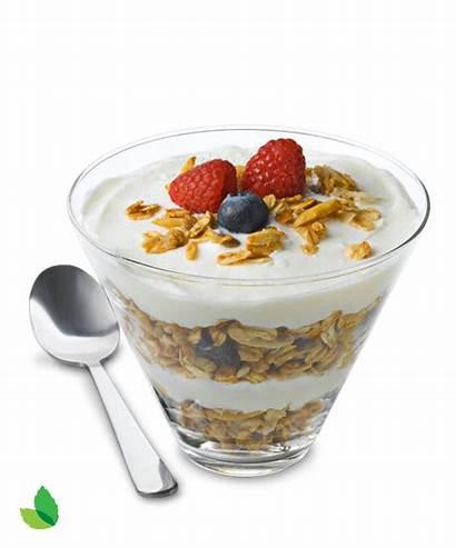 Yogurt Granola Fruit Nut Transparent Sugar Cane