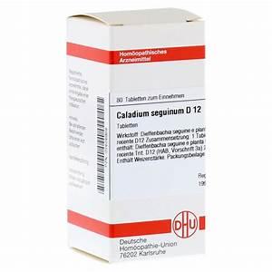 Caladium Knollen Kaufen : caladium seguinum d 12 tabletten 80 st ck n1 online ~ Lizthompson.info Haus und Dekorationen