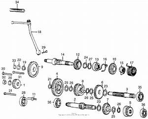 Wiring Diagram Honda Mr50