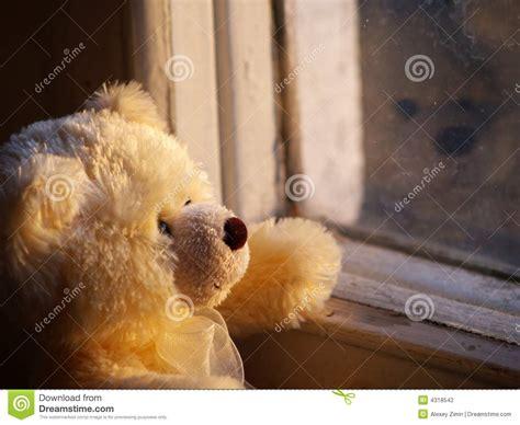 lonely teddy bear stock photo image  wait