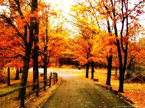 Pretty Fall Backgrounds Wallpapers Cave Desktop Background