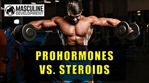 Prohormones 101  What They Are  U0026 How They Work  Update 2020