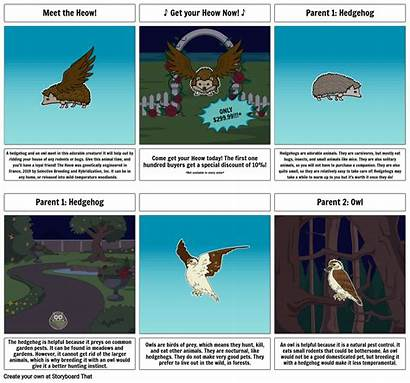 Breeding Selective Campaign Sales Storyboard Storyboards