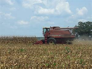 Corn Harvest is Winding Down in Jackson County » Panhandle ...
