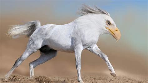 26 Photoshopped Animal Hybrids That Are Straight Out Of A