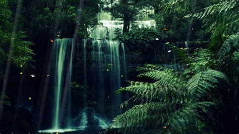 Animated Forest Wallpaper - mystic forest animated wallpaper http www