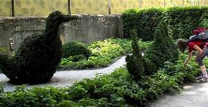 Ersatzpflanze Für Buchsbaum : buchsbaum formschnitt kugeln und figuren schneiden topiary ~ Michelbontemps.com Haus und Dekorationen