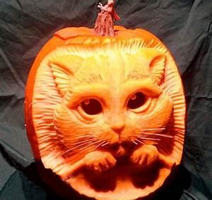 20, Halloween, Pumpkins, You, U0026, 39, Ll, Wish, You, Carved