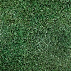 meadow grass effect vinyl floor design 36 50 per square metre