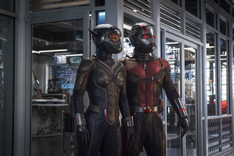 Antman And The Wasp Image Reveals Paul Rudd, Evangeline