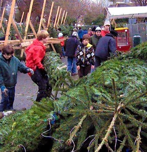 best seattle tree lot helpline tree lot is open
