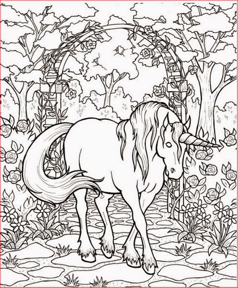printable fantasy coloring pages  kids  coloring pages  kids