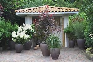 Sichtschutzpflanzen Für Terrasse : terrasse terrasse pinterest pflanzen balkon und inspiration ~ Indierocktalk.com Haus und Dekorationen