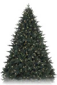 Balsam Hill Christmas Tree Black Friday Sale balsam hill christmas tree sale balsam hill christmas
