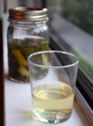 bathtub gin recipe viet world kitchen