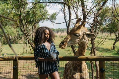 #WHERETO WITH UBER: A DAY AT LION & SAFARI PARK — Spirited ...