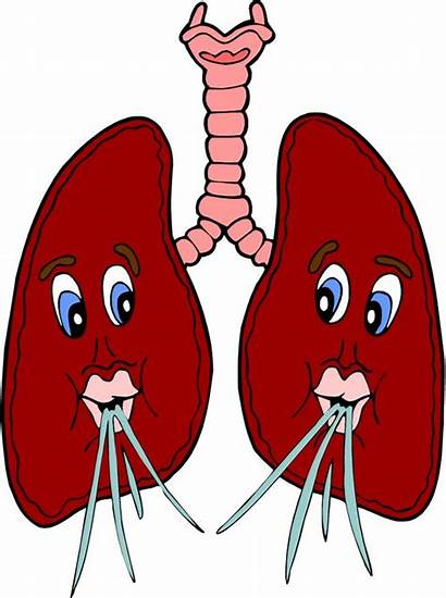 Lungs Clipart Breathing Cartoon Respiratory Lung Clip