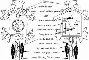 Cuckoo Clock Instructions In 2019
