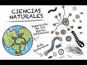 ciencias naturales y sus ramas de cristopher garcia - YouTube