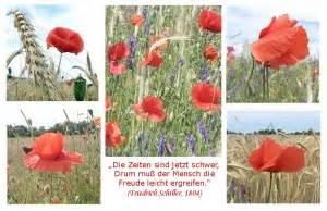 aeltere fotokarten natur  bild und wort